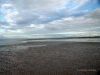Plaża w Hervey Bay w Australii podczas odpływu